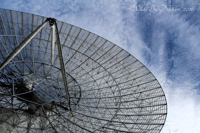 26-meter-dish1